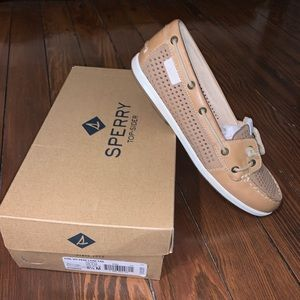 New in Box Sperry Top Sider Woman's 8 1/2 M Tan